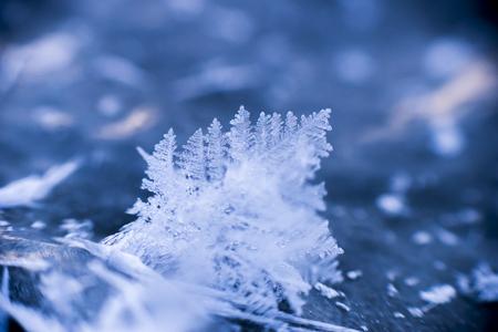 freezing: Freezing