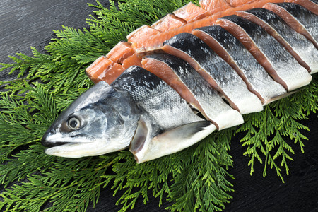 white salmon river: Salmon Stock Photo