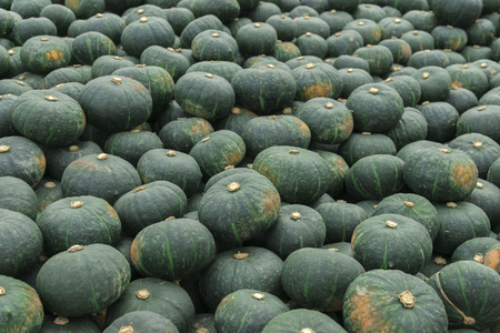 quantities: Pumpkin Stock Photo