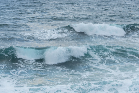 oma: Wave