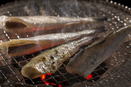 remission: Grilled fish