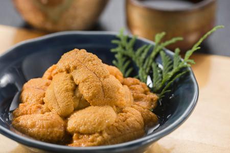 Sea urchin Banco de Imagens
