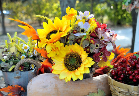 flowerpower: Autumn Bouquet, colorful autumn decoration, sunflower and berries Stock Photo