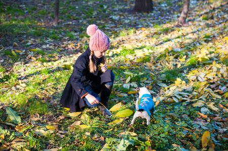 endear: A little blond play girl with her pet dog jack russel terrieroutdooors in park