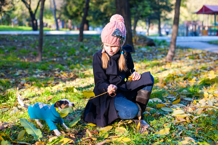endear: A little blond play girl with her pet dog outdooors in park