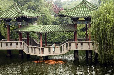 Chinese girl on a bridge feeding koi Reklamní fotografie