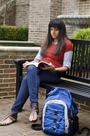 middle eastern woman: Middle Eastern woman sitting on a bench reading Stock Photo