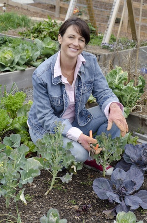 mulch: Smiling gardener working in th egarden pruning her plants Stock Photo
