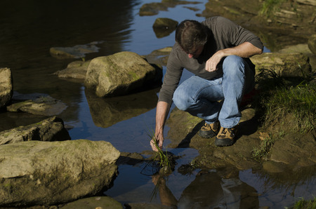ecologist: ecologist looks at plant life in the river