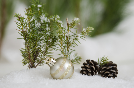 Silver and glitter ornament in the snow