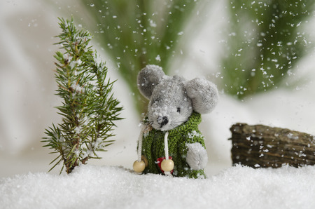 Cute little mouse outside in the snow fall