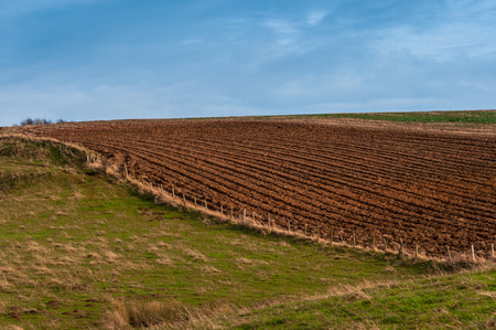 plowed field: Agricultural Meadows and Ploughed Plowed Field