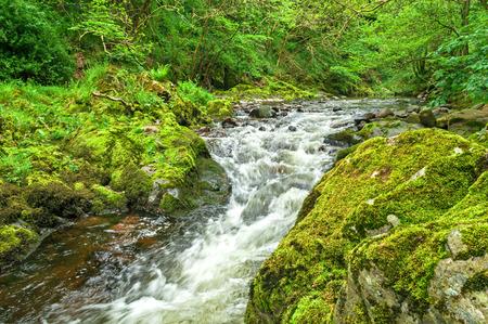 lake district: Lake District ,Mountain Stream