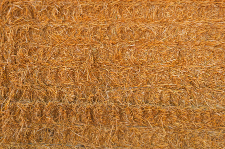 Straw Hay Background photo