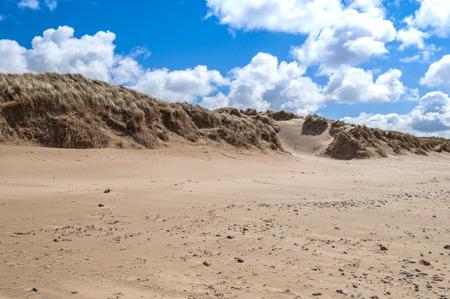 swept: Wind Swept GrassSand Dunes on Beach