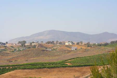 Wine Country California Stock Photo