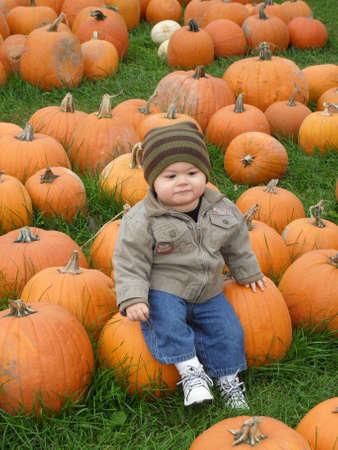 pumpkin patch: Young boy in a pumpkin field