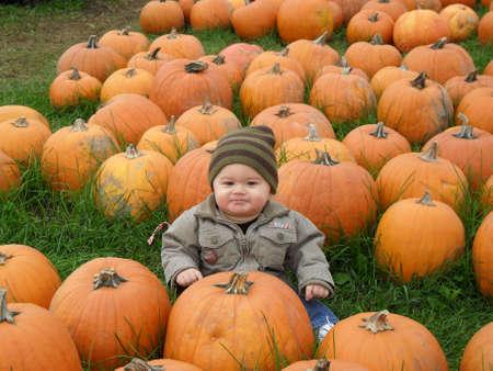 Baby boy sitting in a pumpkin field photo