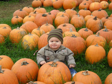 Baby boy sitting in a pumpkin field
