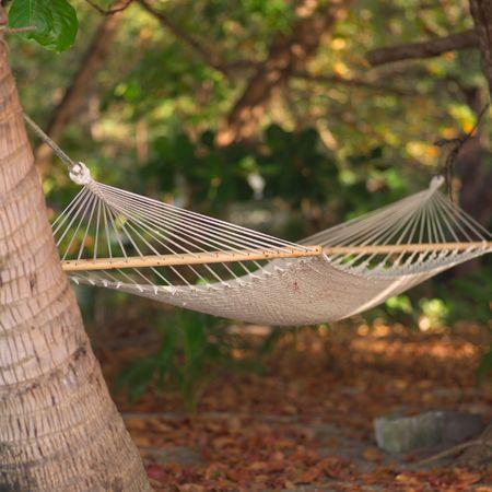 Malpais in Costa Rica,Hammock