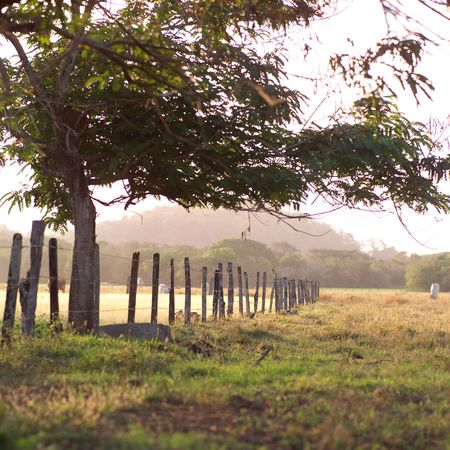 america countryside: Costa Rica,Fence along farmland in Costa Rica