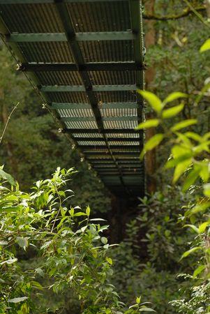 Costa Rica,Suspension bridge