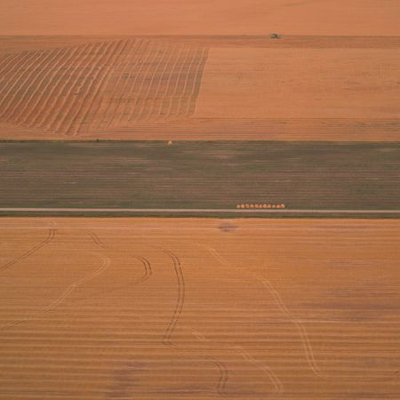 Canadian Prairies,Aerial view of harvested wheat field Stock Photo - 2348533