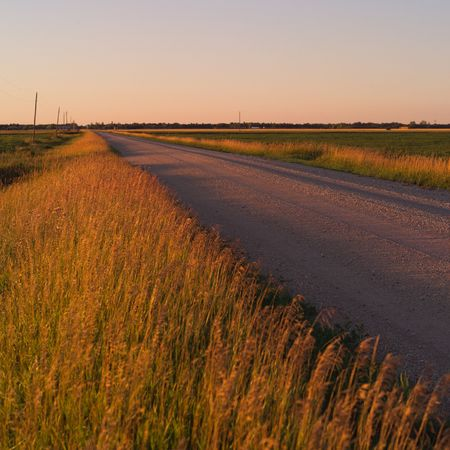 Canadian Prairies,Rural road Stock Photo - 2348515