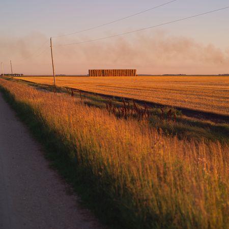 Canadian Prairies,Rural road Stock Photo - 2347852