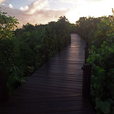 cay: Parrot Cay,Boardwalk at sunset