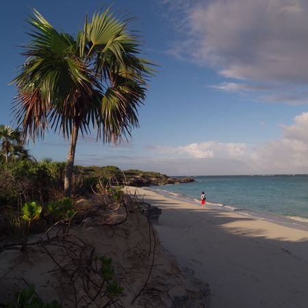 cay: Parrot Cay,Beach at Parrot Cay