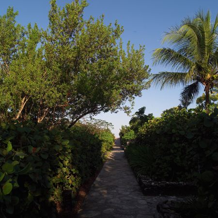 cay: Parrot Cay,Pathway through gardens at Parrot Cay