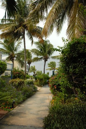cay: Parrot Cay,Scenery in Parrot Cay