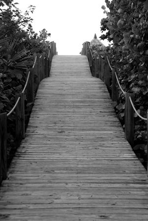 Parrot Cay,Board walk Фото со стока