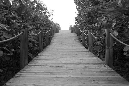 cay: Parrot Cay,Board walk Stock Photo