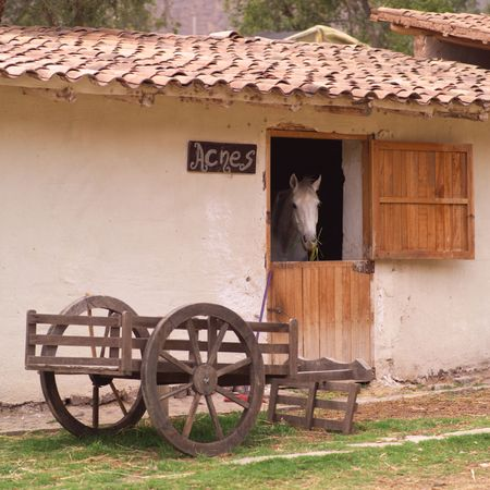 Peru - Sacred Valley, Horse in a stable photo