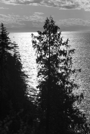 Vancouver British Columbia, View from Prospect Point in Stanley Park