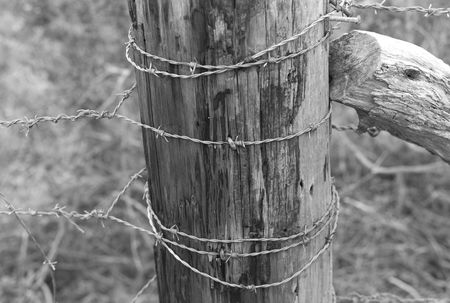 barbed wire and fence: Close-up of barbed wire fence