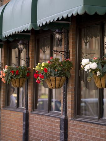 Hanging flower baskets in front of a store in Montreal