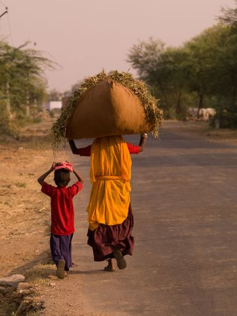 Rajasthan, India - woman balancing hay on her head Stock Photo