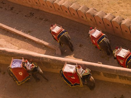 People riding elephants in Amber Fort, Jaipur, India photo