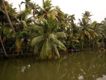 Canoe on backwater, Kerala, South India Stock Photo