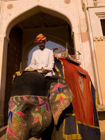 Man rijdt een olifant in India Stockfoto