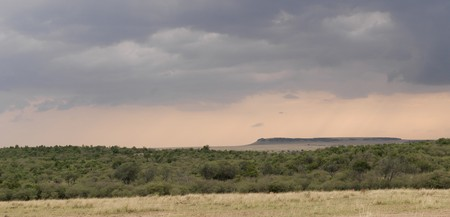 maasai mara: Masai Mara paesaggio in Africa Kenya