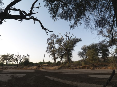 levit: Dried riverbed in Kenya Africa Stock Photo