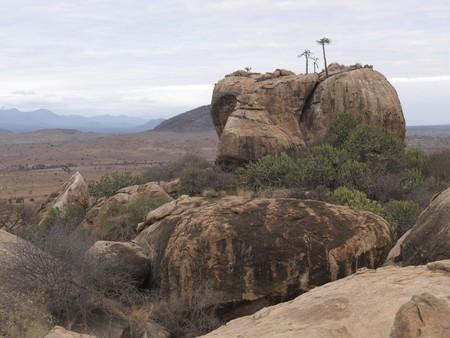 levit: Kenya landscape