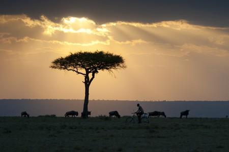 Kenya landscape at sunset