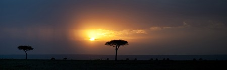 Kenya landscape at sunset