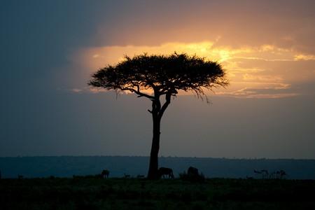 Kenya landscape at sunset photo