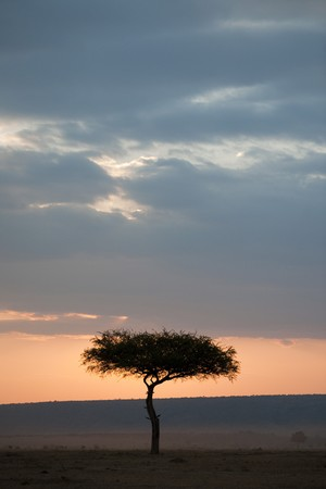Kenya sky at sunset photo